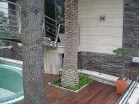 Hotel FORZA MARE 1